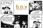 BNV consulting pozvánka