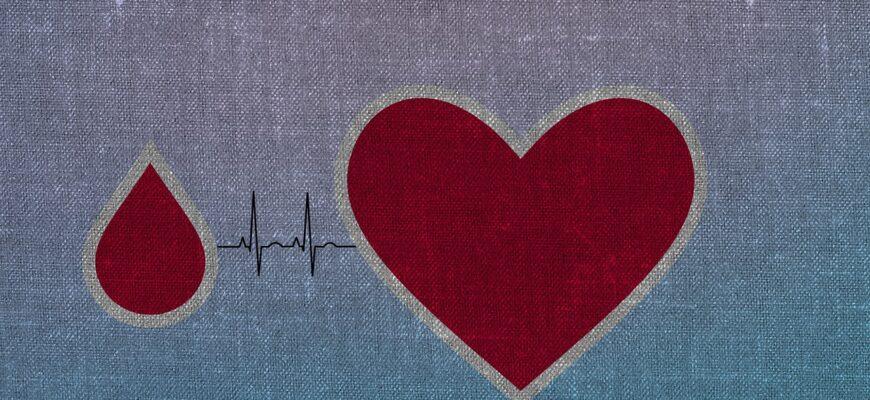 Heart Blood Drops Donation Texture  - KLAU2018 / Pixabay