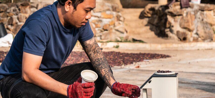 Man Coffee Coffee Harvest  - HannoversKaffeemanufaktur / Pixabay