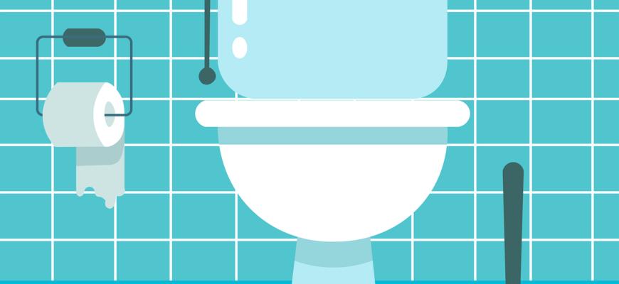 Toilet Toilet Bowl Lavatory  - HaticeEROL / Pixabay
